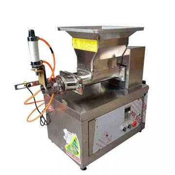 Small scale food processing machine pasta extruder machine