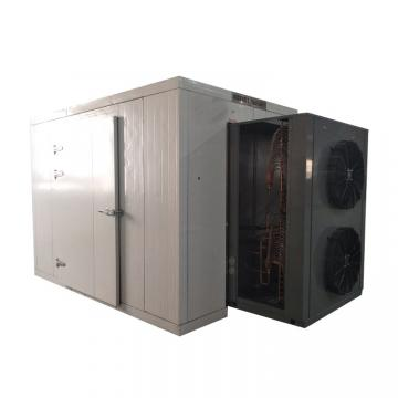 LTDG-200 High Effect Vegetable vacuum drying machine