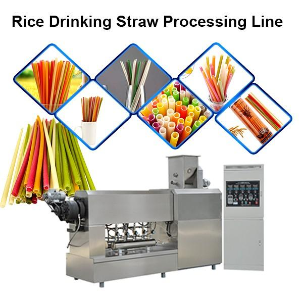 Eo-Friendly Industrial Biodegradable Drinking Straw Making and Cutting Machine Extruder Production Line #1 image
