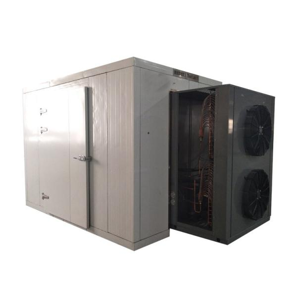 LTDG-200 High Effect Vegetable vacuum drying machine #1 image