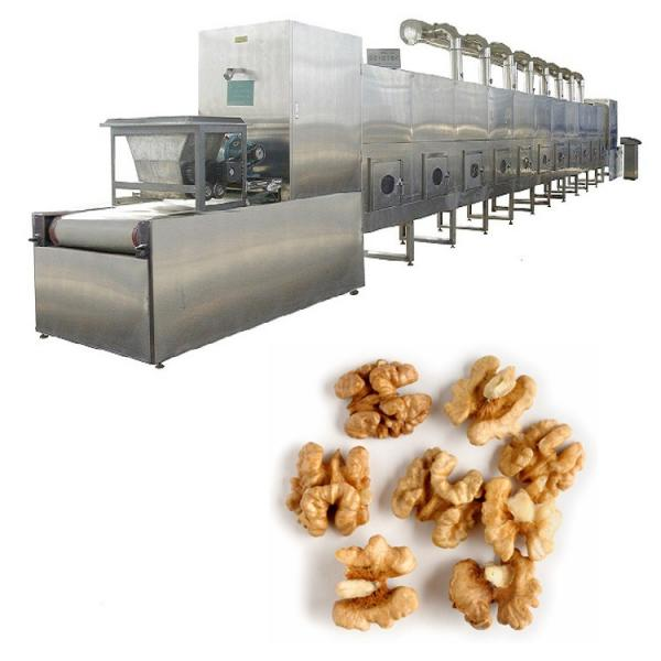 Vacuum dryer for fruit and vegetatble /freeze drying machine ginger drying #1 image