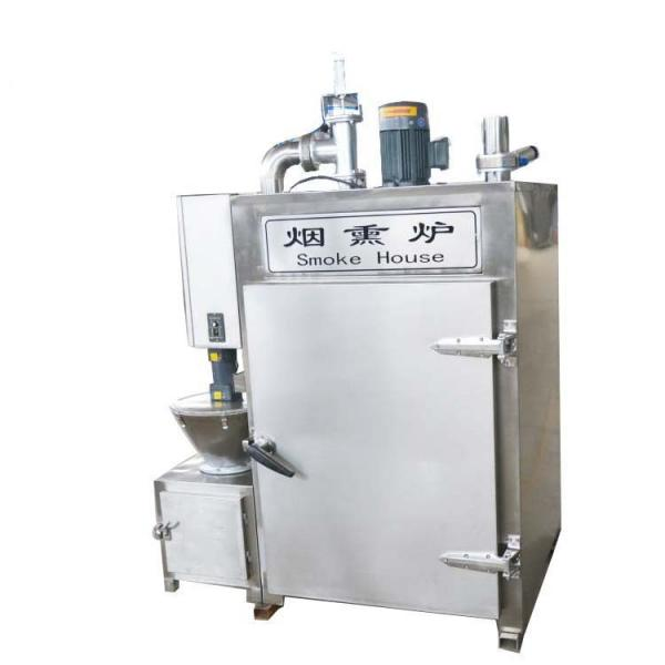 Industrial Electric and Steam Smoked Smoking Fish Machine Equipment #1 image