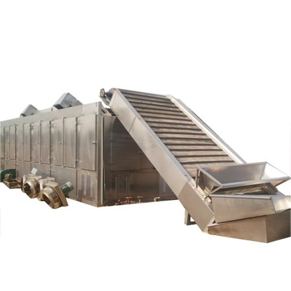 Industrial Continuous mesh belt hemp biomass drying machine #1 image