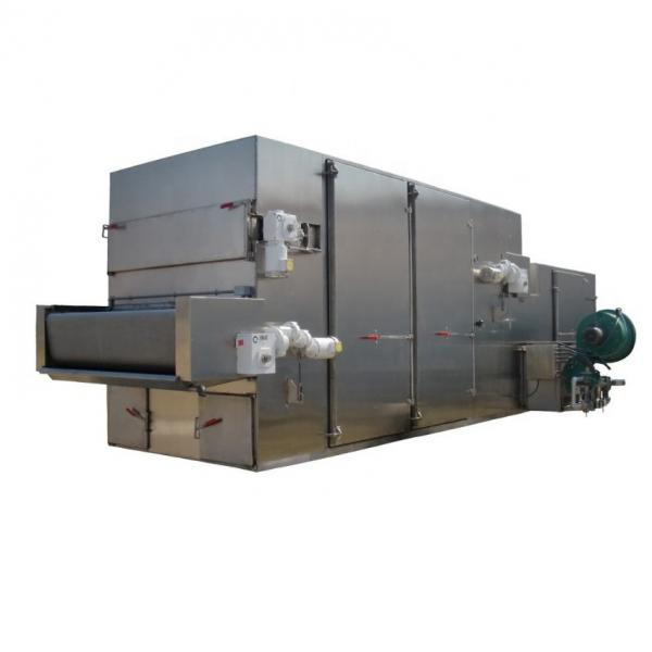 Industrial Continuous mesh belt hemp biomass drying machine #3 image