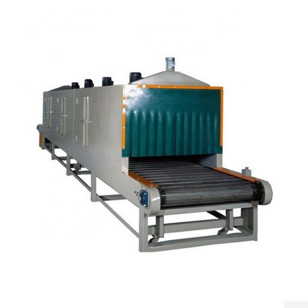 Fruit Drying Process Machine/mesh belt dryer #2 image