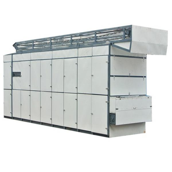 belt dryer machine belt type of fruit and vegetable dryer machine coconut dehydrator mesh belt dryer banana drying machine #1 image